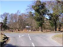 TM4669 : Minsmere Road, Dunwich by Adrian Cable
