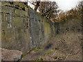 SJ5088 : Pex Hill Quarry by David Dixon