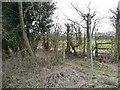 SE3440 : Footpath sign, Brandon Lane by Christine Johnstone
