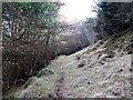 J3630 : Path beyond the dead-end forest track by Eric Jones