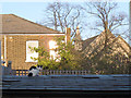TQ3978 : Cat on a cold slate roof by Stephen Craven