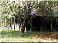 SN9447 : Derelict pump room at Llangammarch Wells by Richard Green