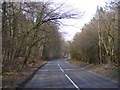TG1207 : B1108 Watton Road by Adrian Cable