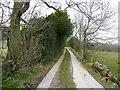 SE0620 : High Trees Lane by Humphrey Bolton