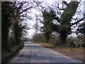 TG1107 : The Street, Wramplingham by Geographer