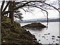 NY3702 : Rocky islet near Holme Crag by Ian Cunliffe