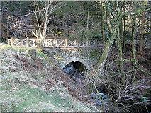 SN7673 : Hafod - bridge across the Nant Peiran by Rudi Winter