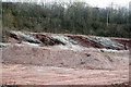 SJ6890 : Clay beds in a former clay pit by Alan Murray-Rust