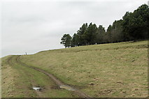 SK2369 : The Footpath across Calton Pastures by K  A