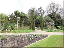 TQ2882 : Trees in Queen Mary's Gardens by Paul Gillett