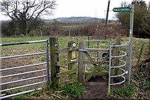 SP9623 : Footpath to Blackgrove Wood by Philip Jeffrey