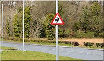 "J4774 : ""Deer"" sign, Newtownards by Albert Bridge"