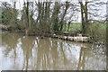 SO9868 : Worcester & Birmingham Canal - derelict boat by Chris Allen