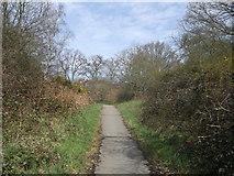 TQ2373 : Path to Highlands Heath, Putney Heath by David Anstiss