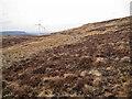 NG3546 : Western slopes of Cruachan-Glen Vic Askill by Richard Dorrell