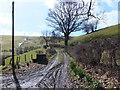 SJ1532 : Farm track to Cyrchynan-isaf by John Haynes