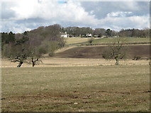 NZ0166 : Farmland and woodland southwest of White House by Mike Quinn