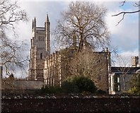 SU4828 : St. Mary's Chapel, Winchester College by Michael FORD