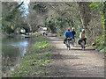N8767 : The Boyne Canal at Navan by Robert Ashby