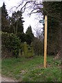 TM0878 : Footpath to Rectory Road by Geographer