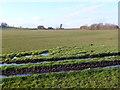 ST6066 : Waterlogged Fields at New Barn Farm by Nigel Mykura