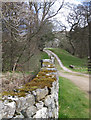 SE6797 : Entrance to St Mary's, Farndale by Pauline E