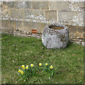 SE6797 : Old font, or water trough? by Pauline E
