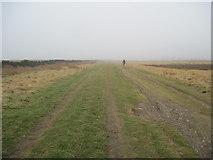 NZ7814 : Track  on  Newton  Mulgrave  Moor by Martin Dawes