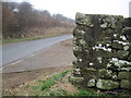 NZ7615 : Bench  Mark  on  Dry  Stone  Wall  Moor  Lane by Martin Dawes