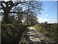 SS5809 : Lane near Pewson Barton by Derek Harper