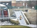 NZ4619 : A water escalator by the Tees Barrage by Stanley Howe