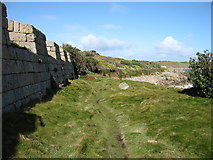 SV8909 : The ramparts of Woolpack Battery by David Purchase