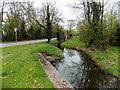 ST3084 : Pontygwcw Reen, Newport by Jaggery