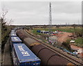 ST3084 : Two freight trains pass near Pheasants Bridge, Newport by Jaggery