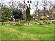 TQ2782 : Flowerbeds - St John's Wood Church Grounds by Paul Gillett
