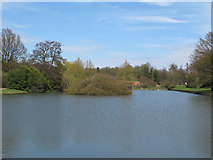 TL8425 : Lower Lake, Marks Hall Estate by Roger Jones