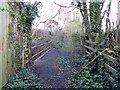 NZ1665 : Disused railway bridge over New Burn by Andrew Curtis