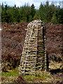 H6278 : Wicker sculpture, Creggan by Kenneth  Allen