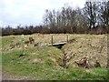 SJ8248 : Footbridge, Apedale Community Country Park by Christine Johnstone