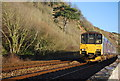 SX9574 : Paignton Train, Riviera Line by N Chadwick