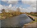 SJ5184 : St Helens (Sankey) Canal by David Dixon