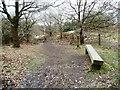 SJ8148 : The path down to Perch Pool by Christine Johnstone
