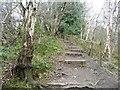 SJ8148 : Steps on the path to Perch Pool by Christine Johnstone
