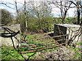 NT4276 : Coastal East Lothian : WW2 Anti-tank Blocks Behind Seton Sands by Richard West