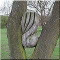 TL8814 : Wood Sculpture, Tiptree Heath by Roger Jones