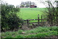 SP8324 : Part of the Cublington Spinney circular walk by Philip Jeffrey