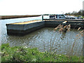 TG4110 : The River Bure past Acle Dyke by Evelyn Simak
