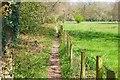 SZ2895 : Public Footpath by Mike Smith