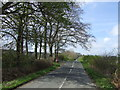 NZ2748 : Wheatleywell Lane heading west by JThomas