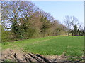 TM4071 : Field entrance off the entrance to South Manor Farm by Adrian Cable